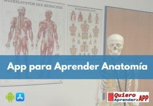 aplicaciones para aprender anatomía