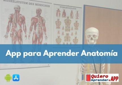 Mejores Aplicaciones para Aprender Anatomía Humana