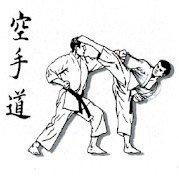 estudiar karate